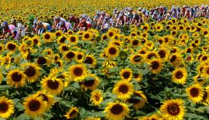2009 Tour de France stage 11