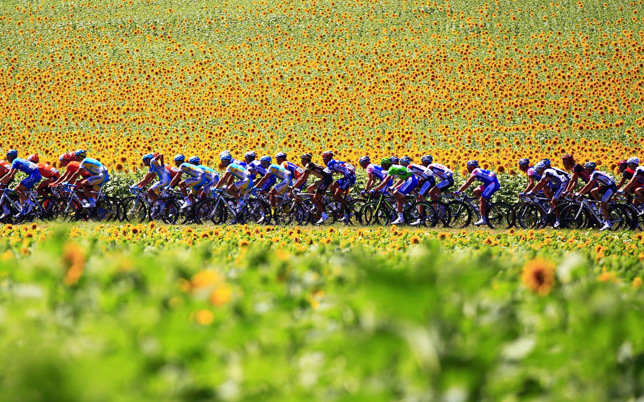 JACQUELINE YAUMenuConfessions of a Tour de France JunkieRecent PostsPagesTags